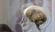 Создано беспроводное устройство, которое доставляет лекарственные препараты напрямую в мозг